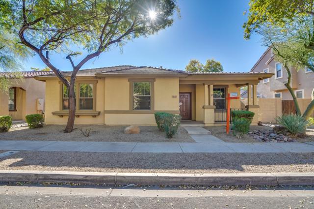 2855 E Megan Street, Gilbert, AZ 85295 (MLS #5859016) :: The Kenny Klaus Team