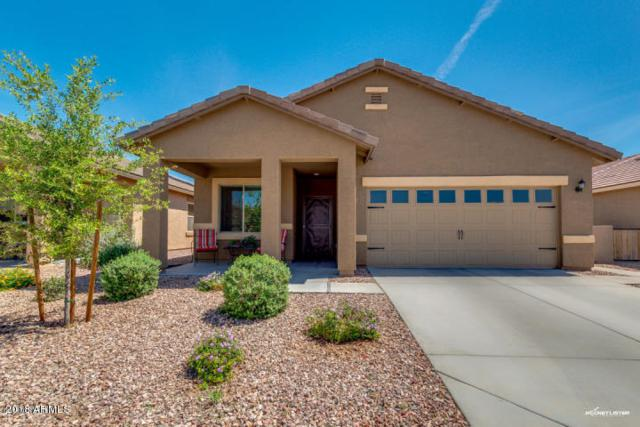 261 S 225TH Lane, Buckeye, AZ 85326 (MLS #5859156) :: The Laughton Team