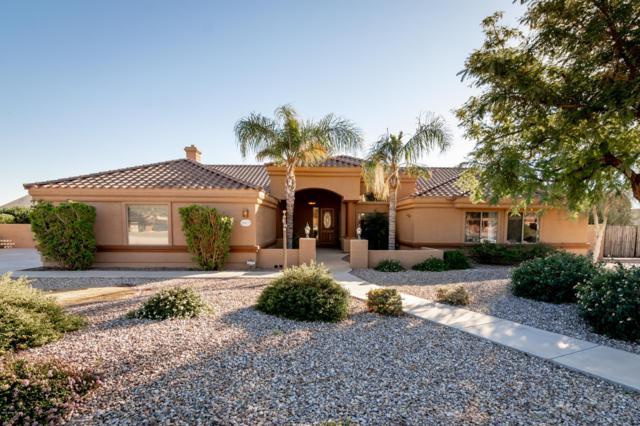 9817 W Camino De Oro, Peoria, AZ 85383 (MLS #5859195) :: Conway Real Estate