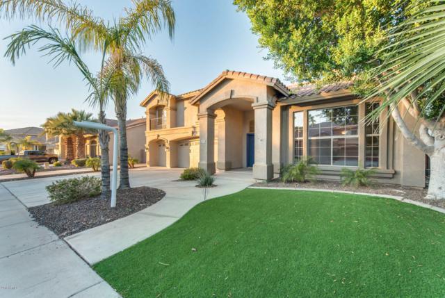 13316 W Annika Drive, Litchfield Park, AZ 85340 (MLS #5859277) :: The Results Group