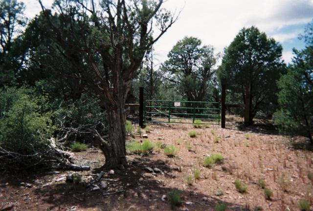 0 Juniperwood Ranch, Ash Fork, AZ 86320 (MLS #5859306) :: Yost Realty Group at RE/MAX Casa Grande