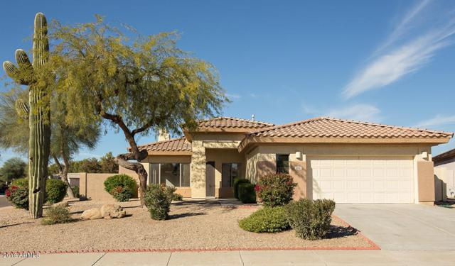 2690 N 132ND Drive, Goodyear, AZ 85395 (MLS #5859334) :: The W Group
