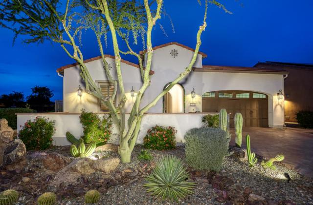 12920 W Roy Rogers Road, Peoria, AZ 85383 (MLS #5859356) :: Lucido Agency