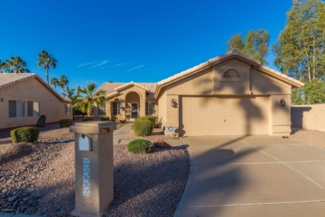 23602 S Desert Dance Court, Sun Lakes, AZ 85248 (MLS #5859359) :: The Laughton Team