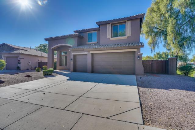 3049 E Goldfinch Way, Chandler, AZ 85286 (MLS #5859364) :: The W Group