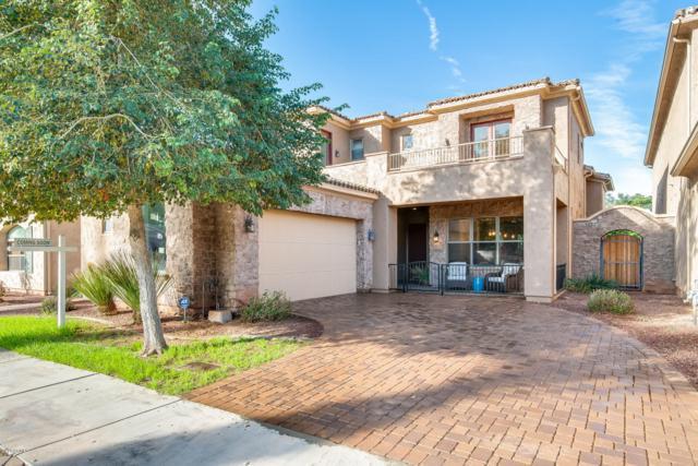14650 W Hidden Terrace Loop, Litchfield Park, AZ 85340 (MLS #5859371) :: The W Group