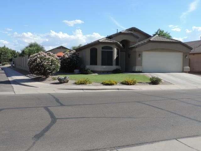 43689 W Cahill Drive, Maricopa, AZ 85138 (MLS #5859444) :: The Daniel Montez Real Estate Group