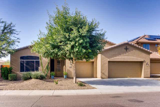 26628 N 20TH Lane, Phoenix, AZ 85085 (MLS #5859538) :: The Pete Dijkstra Team