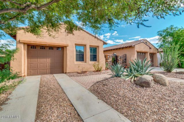 14545 W Sheridan Street, Goodyear, AZ 85395 (MLS #5859621) :: The Property Partners at eXp Realty