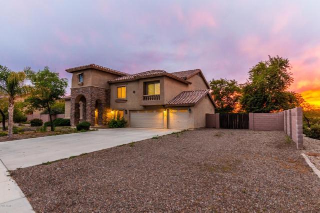 26606 S 116TH Street, Chandler, AZ 85249 (MLS #5859641) :: Keller Williams Realty Phoenix