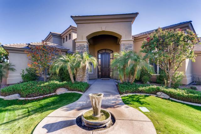 4253 W Kitty Hawk, Chandler, AZ 85226 (MLS #5859710) :: The Daniel Montez Real Estate Group