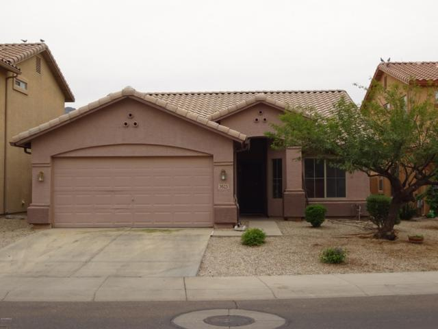 3523 W Hopi Trail, Laveen, AZ 85339 (MLS #5859864) :: The Everest Team at My Home Group