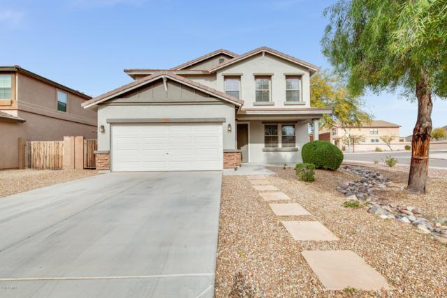 7536 W Andrea Drive, Peoria, AZ 85383 (MLS #5859884) :: RE/MAX Excalibur