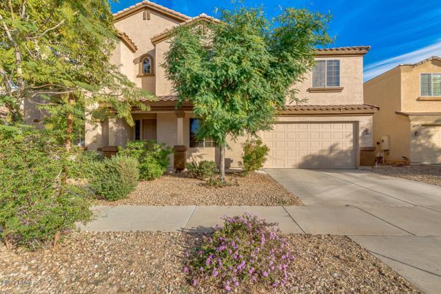 14483 N 135TH Lane, Surprise, AZ 85379 (MLS #5860058) :: Conway Real Estate