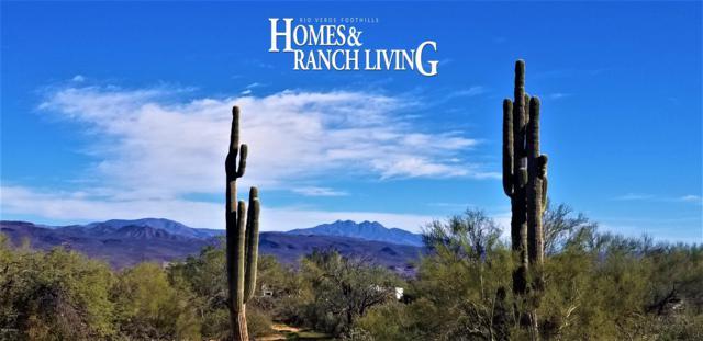 27410 N 174th Street, Rio Verde, AZ 85263 (MLS #5860061) :: Conway Real Estate