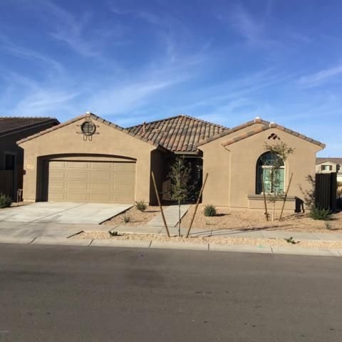 22496 E Sonoqui Boulevard, Queen Creek, AZ 85142 (MLS #5860150) :: Revelation Real Estate