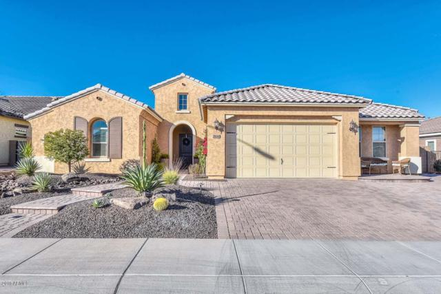 28048 N 99TH Lane, Peoria, AZ 85383 (MLS #5860169) :: RE/MAX Excalibur