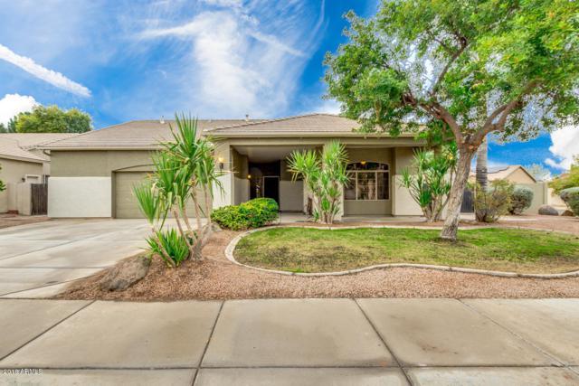 444 S Ironwood Street, Gilbert, AZ 85296 (MLS #5860254) :: Yost Realty Group at RE/MAX Casa Grande