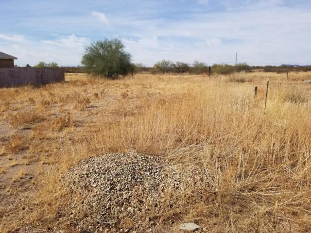 0 N Bush Street, Wittmann, AZ 85361 (MLS #5860279) :: Brett Tanner Home Selling Team
