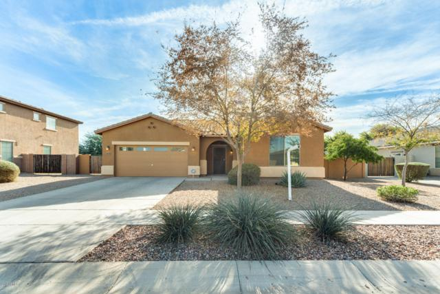 7835 W Peck Drive, Glendale, AZ 85303 (MLS #5860287) :: The Property Partners at eXp Realty