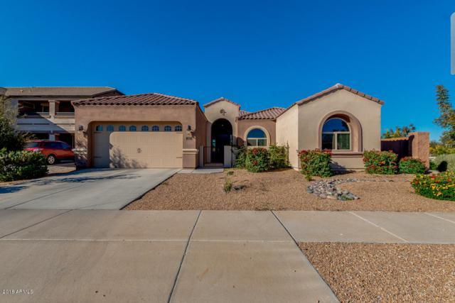 23210 S 222ND Way, Queen Creek, AZ 85142 (MLS #5860358) :: Yost Realty Group at RE/MAX Casa Grande