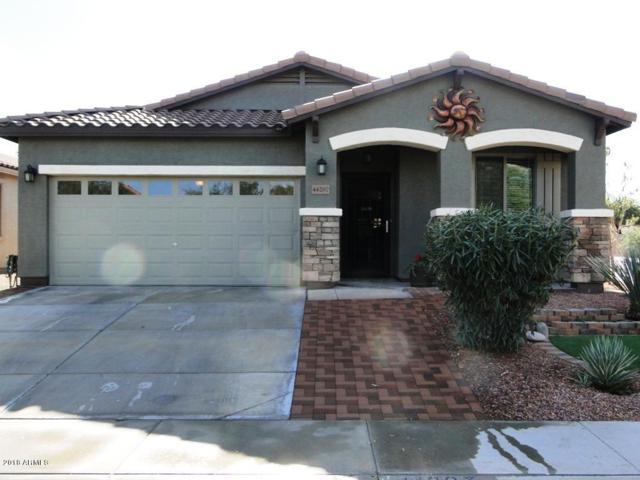 44207 W Cydnee Drive, Maricopa, AZ 85138 (MLS #5860412) :: The Daniel Montez Real Estate Group