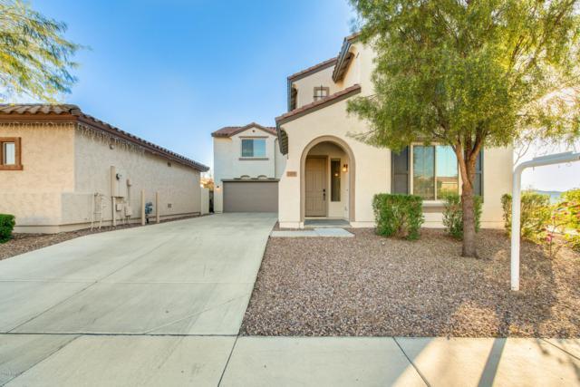 7425 W Palo Brea Lane, Peoria, AZ 85383 (MLS #5860608) :: The Laughton Team