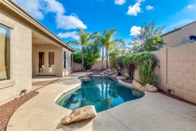 3225 W Galvin Street, Phoenix, AZ 85086 (MLS #5860687) :: Conway Real Estate