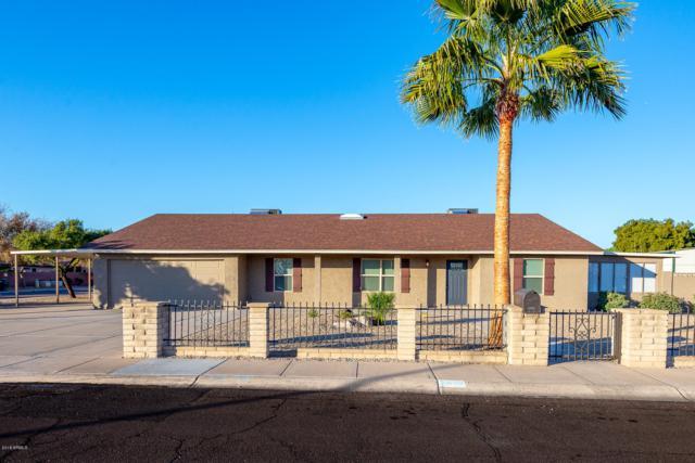 3402 E Carol Ann Way, Phoenix, AZ 85032 (MLS #5860714) :: Conway Real Estate