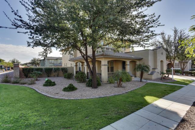 13687 N 151ST Lane, Surprise, AZ 85379 (MLS #5860772) :: Phoenix Property Group