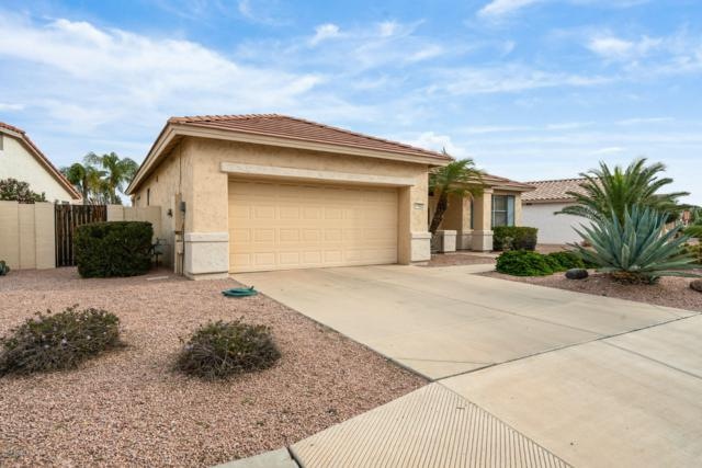 17822 W Club Vista Drive, Surprise, AZ 85374 (MLS #5860805) :: Conway Real Estate