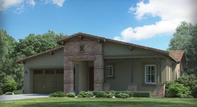 4892 N 207TH Lane, Buckeye, AZ 85396 (MLS #5860826) :: Lifestyle Partners Team