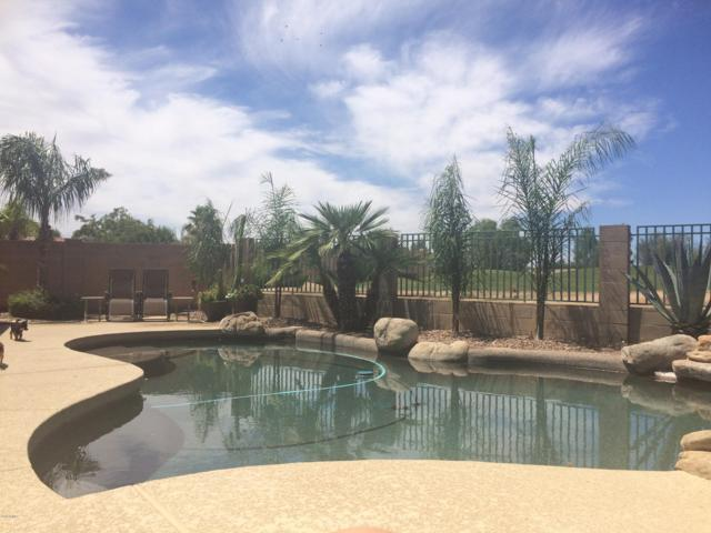 13221 W Palm Lane, Goodyear, AZ 85395 (MLS #5860829) :: CC & Co. Real Estate Team