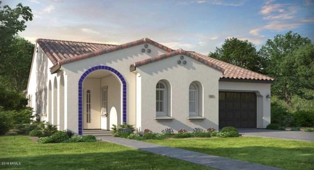 4891 N 207TH Lane, Buckeye, AZ 85396 (MLS #5860832) :: Lifestyle Partners Team