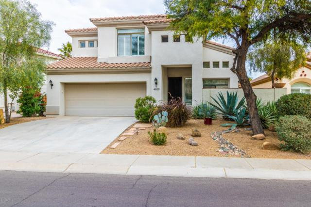 4609 N Clear Creek Drive, Litchfield Park, AZ 85340 (MLS #5861070) :: The Results Group