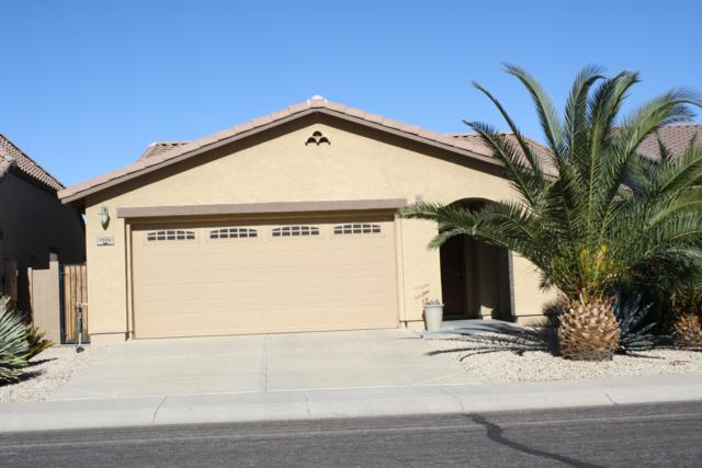 1506 E Lakeview Drive, San Tan Valley, AZ 85143 (MLS #5861086) :: The Property Partners at eXp Realty