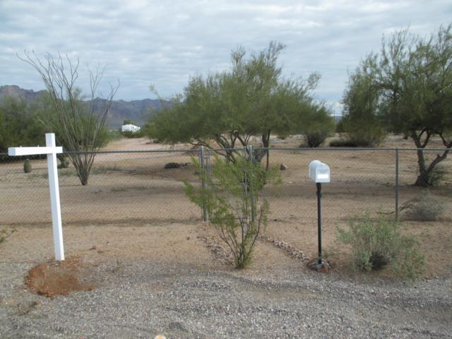 1127 S Cortez Road, Apache Junction, AZ 85119 (MLS #5861157) :: The Kenny Klaus Team