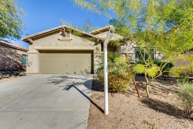 8452 W Alyssa Lane, Peoria, AZ 85383 (MLS #5861199) :: The W Group