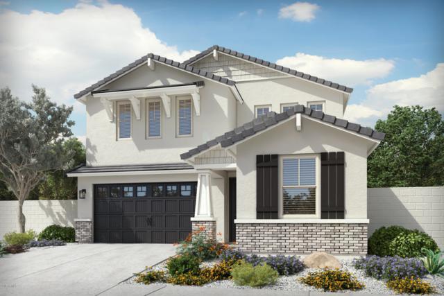 37713 N Bentgrass Road, San Tan Valley, AZ 85140 (MLS #5861209) :: Conway Real Estate