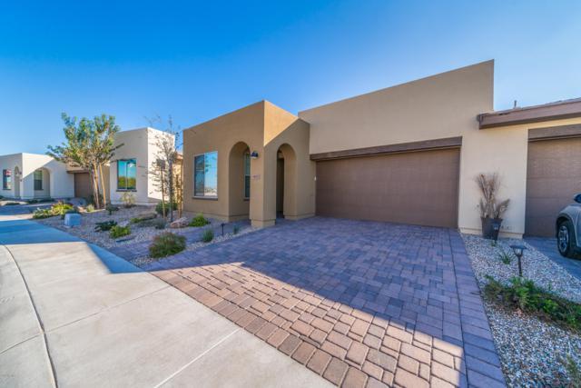 901 E Cereus Pass, San Tan Valley, AZ 85140 (MLS #5861230) :: The Daniel Montez Real Estate Group