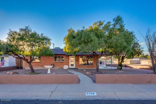 3708 N 80TH Place, Scottsdale, AZ 85251 (MLS #5861248) :: Yost Realty Group at RE/MAX Casa Grande