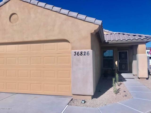 36826 W Mediterranean Way, Maricopa, AZ 85138 (MLS #5861276) :: Revelation Real Estate