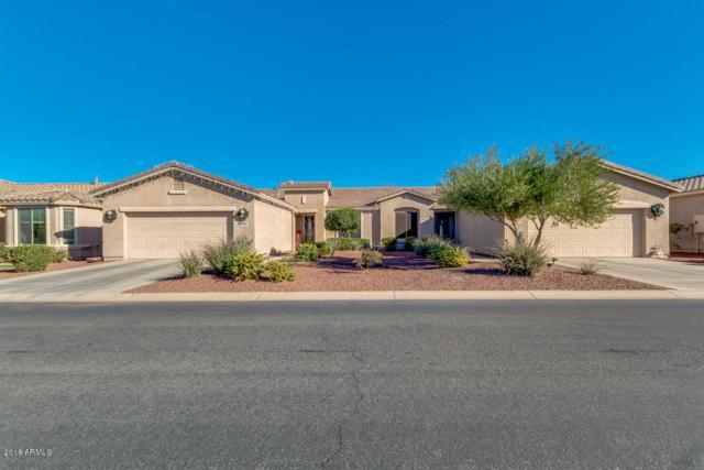 20449 N Lemon Drop Drive, Maricopa, AZ 85138 (MLS #5861294) :: Yost Realty Group at RE/MAX Casa Grande