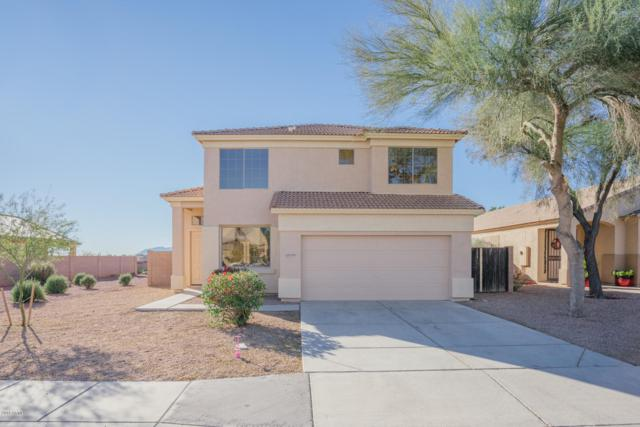 12579 W Monterey Way, Avondale, AZ 85392 (MLS #5861352) :: Lucido Agency