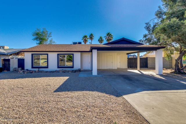 2515 E Sweetwater Avenue, Phoenix, AZ 85032 (MLS #5861355) :: RE/MAX Excalibur