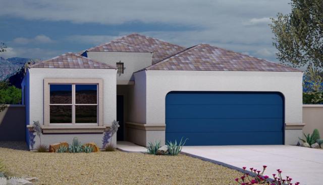 1743 N Mandeville Lane, Casa Grande, AZ 85122 (MLS #5861369) :: The Everest Team at My Home Group