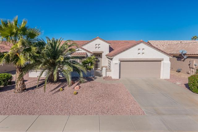 20150 N Sonoran Court, Surprise, AZ 85374 (MLS #5861374) :: Kortright Group - West USA Realty