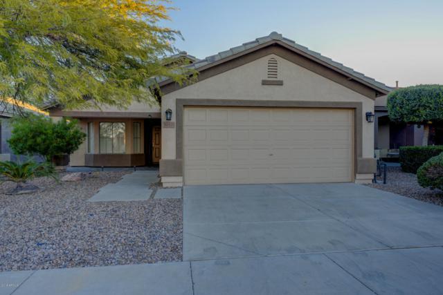 30435 N Sunray Drive, San Tan Valley, AZ 85143 (MLS #5861438) :: Yost Realty Group at RE/MAX Casa Grande