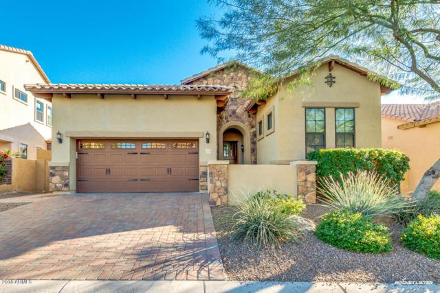 1709 N Channing, Mesa, AZ 85207 (MLS #5861469) :: Santizo Realty Group