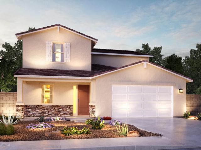 12324 W Myrtle Avenue, Glendale, AZ 85307 (MLS #5861472) :: Conway Real Estate